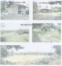 ที่ดินเปล่าหลุดจำนอง ธ.ธนาคารกรุงไทย แพร่ อำเภอเด่นชัย ตำบลเด่นชัย